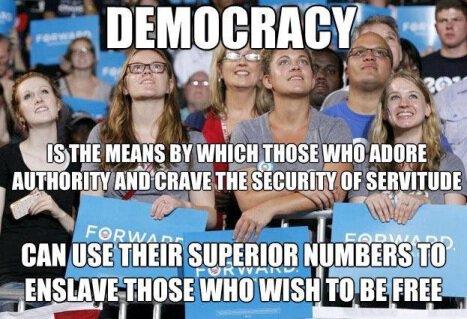 small.democracy.jpg.25daaff852f41eb76b01